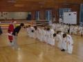 judo24