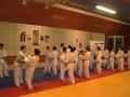 judo31