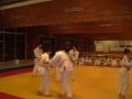 judo33