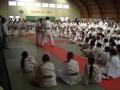 judo41