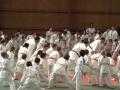 judo40