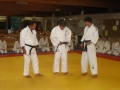 judo75